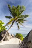 Boulders And Palm Trees, La Digue, Seychelles Stock Photo