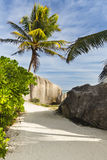 Boulders And Palm Trees, La Digue, Seychelles Royalty Free Stock Image