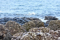 Boulders in the rain, at the Giants Causeway and Cliffs, Northern Ireland Stock Photos