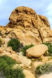 Boulders, red rock formations on the hiking trail in Joshua Tree National Park, California, United States. Sunny summer day Stock Images