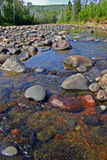 Boulders in River at Temperance State Park Minnesota. Boulders in the water of a shallow river bed in Temperance River State Park of Minnesota Stock Photography