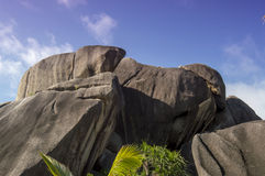 Boulders rocks and leaf coconut palm in La Digue island Seychelles Royalty Free Stock Image