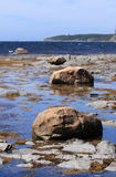 Boulders in Rocky Harbour Stock Image
