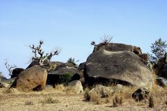 Boulders in Savanna landscape royalty free stock photo