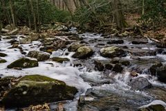Boulder in Stony Creek. Boulders in Stony Creek located below the Cascade Falls, Jefferson National Forest, Giles County, Virginia, USA Royalty Free Stock Images