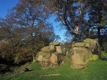 Boulders and trees in Haverah Park, Beckwithshaw, Yorkshire, UK. Boulders and trees in a grassy field against a blue sky in Haverah Park, Beckwithshaw, Yorkshire royalty free stock photos