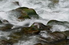 Boulders in water. Dark boulders in fast moving white water royalty free stock images