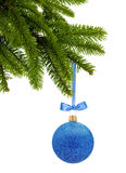Boule bleue de décor de Noël de scintillement sur le ruban sur l'isola de branche d'arbre Image libre de droits