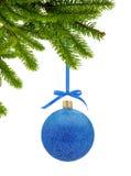 Boule bleue de décor de Noël de scintillement sur le ruban sur la branche d'arbre verte Photos libres de droits