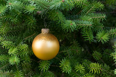 Boule d'or de Noël sur l'arbre de Noël Photo stock