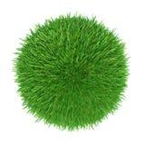 Boule d'herbe verte Photo libre de droits