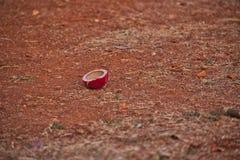 Boule de cricket cassée images stock