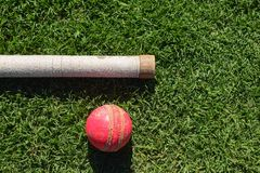 Boule de cricket et poignée de batte d'isolement sur une herbe verte ?quipement de cricket d'isolement sur un fond vert images libres de droits