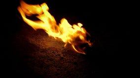 Boule de flamber sur le plancher banque de vidéos