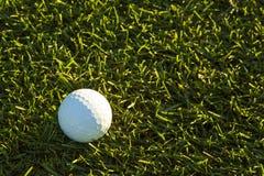 Boule de golf dans le fairway au lever de soleil images libres de droits