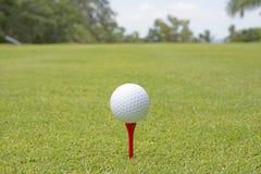 Boule de golf - image courante Images stock