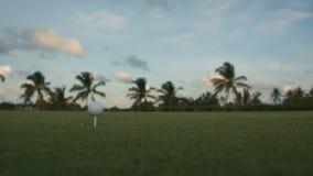 Boule de golf se tenant sur une pièce en t avant impact banque de vidéos