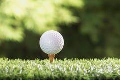 Boule de golf sur des chevilles de pièce en t Photographie stock