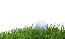 Boule de golf sur l'herbe verte Images stock