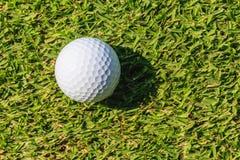 Boule de golf sur l'herbe verte Photo libre de droits
