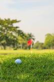 Boule de golf sur l'herbe verte Image libre de droits