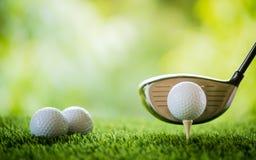 Boule de golf sur la pièce en t à piquer  photo libre de droits