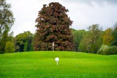 Boule de golf sur la pièce en t Photo stock