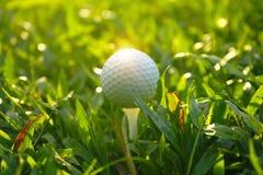 Boule de golf sur la pièce en t dans le beau terrain de golf au fond de coucher du soleil images libres de droits