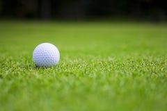 Boule de golf sur le vert Photographie stock libre de droits