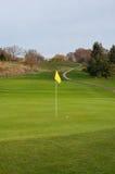 Boule de golf sur le vert, le fairway, le chemin de chariot et la boîte élevée de pièce en t Images libres de droits