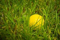 Boule de golf sur une pièce en t contre le terrain de golf avec l'espace de copie Image libre de droits