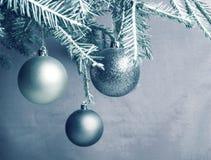 Boule de Noël de nouvelle année sur les branches cru image stock