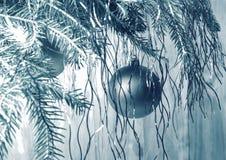 Boule de Noël de nouvelle année sur les branches cru images libres de droits