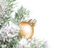 Boule de Noël et toute autre décoration sur l'arbre Photos libres de droits
