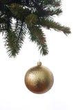 Boule de Noël sur le sapin de branches Image libre de droits