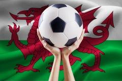 Boule de participation de bras avec le drapeau du Pays de Galles Image libre de droits