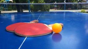 Boule de ping-pong roulant à la batte de ping-pong banque de vidéos