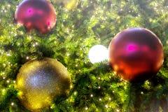 Boule de plan rapproché décorant l'arbre de Noël Photos libres de droits