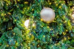 Boule de plan rapproché décorant l'arbre de Noël Image stock