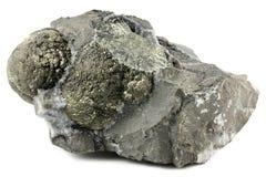 Boule de pyrite photos libres de droits