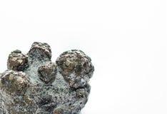 boule de pyrite sur le blanc photos libres de droits