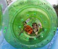 Boule de roulement d'enfants dans l'eau, en parc, Chengdu, porcelaine image stock