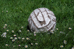 Boule de volleyball Photo libre de droits