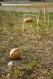 Boule en bois de petanque sur l'herbe Photo stock
