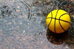 Boule jaune dans le domaine humide Photos stock