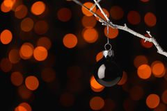 Boule noire de Noël sur une branche Photos libres de droits