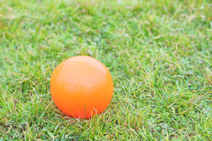 Boule orange se trouvant sur l'herbe verte Image stock