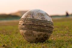 Boule pour le cricket dans l'Inde image libre de droits