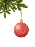 Boule rouge de décor de Noël de scintillement sur le ruban sur l'isolat de branche d'arbre Images stock