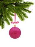Boule rouge de décor de Noël de scintillement sur le ruban sur la branche d'arbre verte Photos libres de droits
